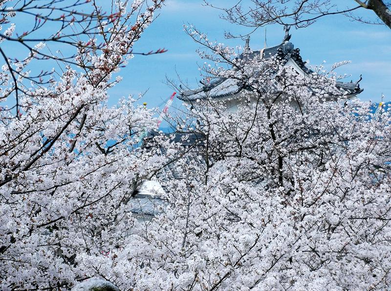 kosanji-hiroshima-zoomjapon05