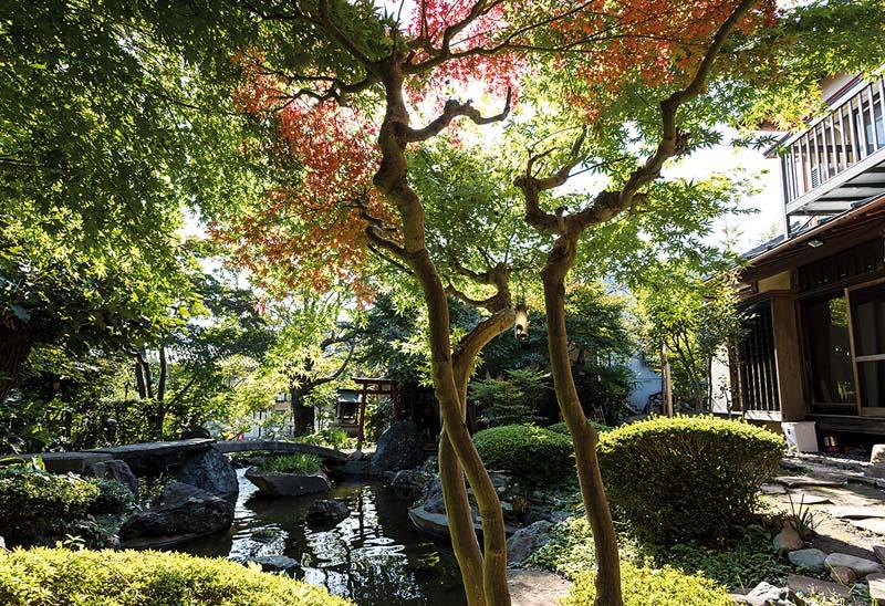 jardin-maison-samourai-zoomjapon80