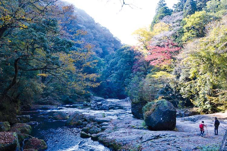 gorges-kikuchi-zoomjapon88