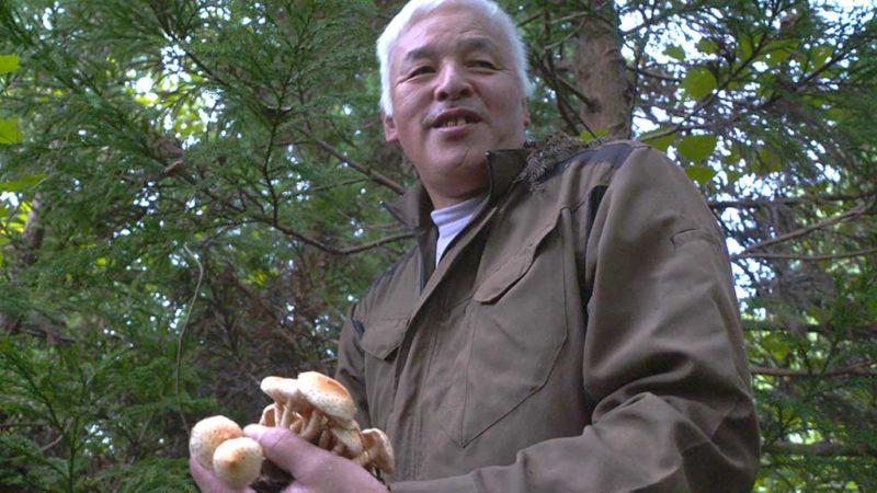 Fukushima Monologue su NHK WORLD-JAPAN, Matsuyama Naoto, Fukushima Daiichi