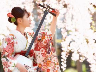 Aomori NHK_WORLD-JAPAN shamisen